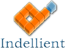 Indellient ACI Orange - Logo